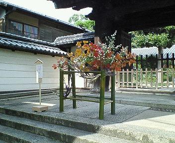 秋の生け花 その3