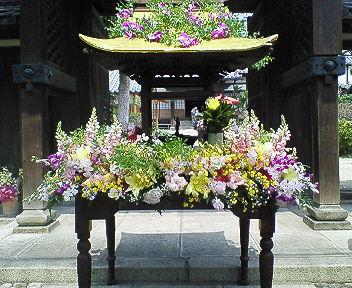 花祭り2007
